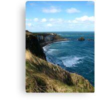 Cliffs of Dingle Canvas Print