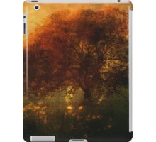 Toward a secret sky ... iPad Case/Skin