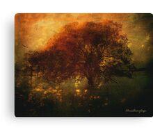 Toward a secret sky ... Canvas Print