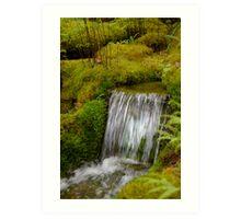 Moss Waterfall Art Print