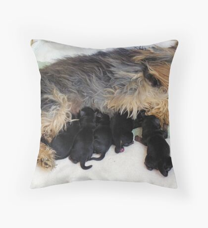 Tara's Pups Throw Pillow