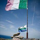 Republic of Newfoundland by Colin Tobin
