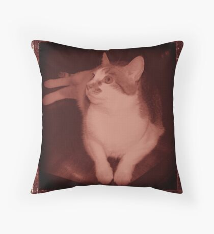 Yesteryear Molly Throw Pillow