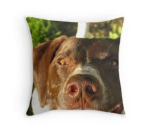 That Crazy Look...  Throw Pillow