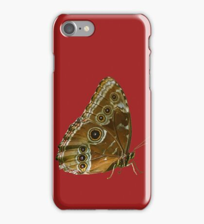 Beautiful Butterfly Wings of Meadow Brown Isolated iPhone Case/Skin