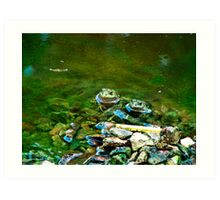 Toads or Frogs Art Print