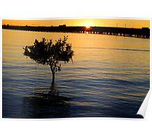 Sunburnt bridge Poster
