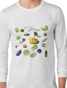 illustration of a set of hand-painted vegetables, fruits Long Sleeve T-Shirt