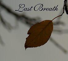 Last Breath....   my tribute to mum by flipteez