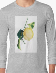 Branch of  lemons with leaves Long Sleeve T-Shirt