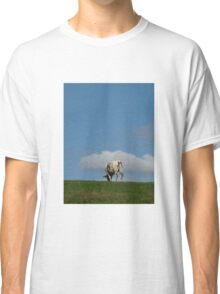Normand cow Classic T-Shirt