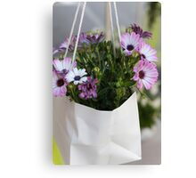 dimorfoteca flower in the basket Canvas Print