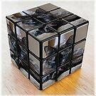 My Rubik's Cubed Cat by PhotosbyNan