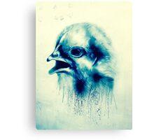 Bird on a london wall Canvas Print