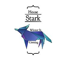House Stark - Stained Glass Photographic Print