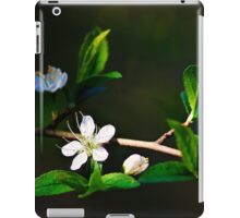 Blossoms of Spring iPad Case/Skin