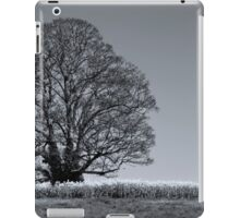 Something More iPad Case/Skin