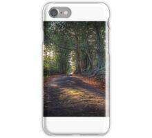 Mystical Woods iPhone Case/Skin