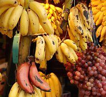 fruitful by steveault