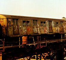 Subway Train by Wayne Gerard Trotman