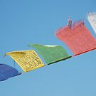 prayer flags by steveault
