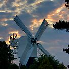 Sunset Windmill by Martin Griffett