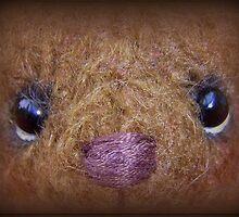 Bear Portrait 3 - Handmade bears from Teddy Bear Orphans by Penny Bonser