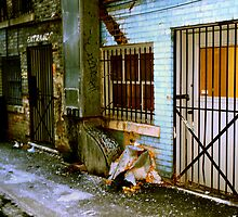 Back Alley Way 2 by Barry W  King