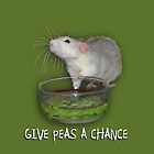 Peas by Carolyne  Gill