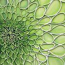 Green Dahlia by cathy savels