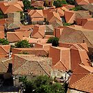 Red roofs by shakey