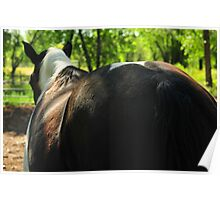 Yes, I'm half Percheron, but I don't want to talk about it! Poster