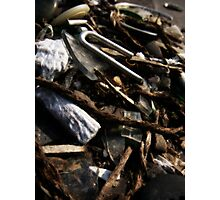 Collected Works Photographic Print