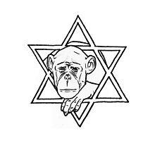 The monkey of wisdom by MariaDiaz