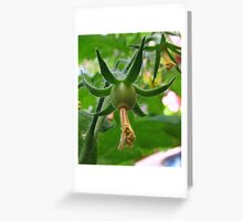 Promise Greeting Card