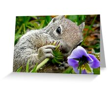 squirrel with a flower Greeting Card