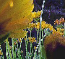 'Early Morning Garden' by DLUhlinger