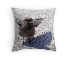 Baby Gray Jay Throw Pillow