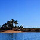 Sams Island by Sheldon Pettit