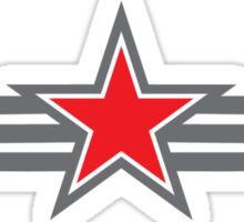 Military star with wings Sticker