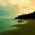 Mayaro Beach by Wayne Gerard Trotman