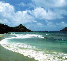 Tobago by Wayne Gerard Trotman