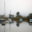 Rocky Bay Boats by CaseyConnor