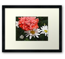 Daisies and Poppies Framed Print