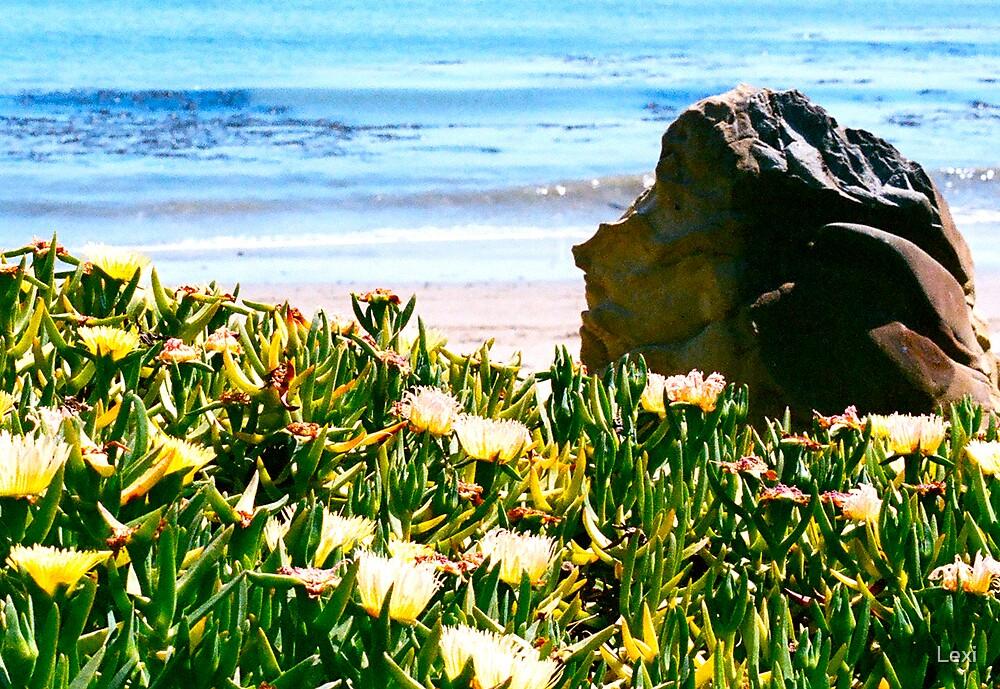 Rock Sculpture Padaro by Lexi