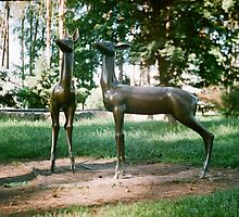 Deers by Krolikowski Art