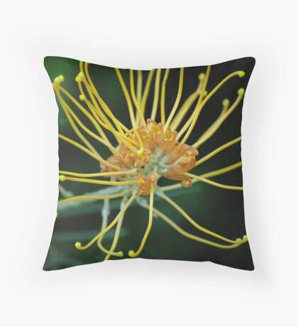 golden grevillea Throw Pillow