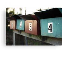 pick a number....any number  Canvas Print