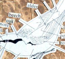 Nuthatch Book Collage Sticker