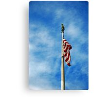 Land of the Free Canvas Print